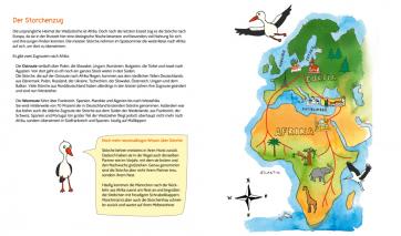 Innenteil: Was macht der Storch im Winter?