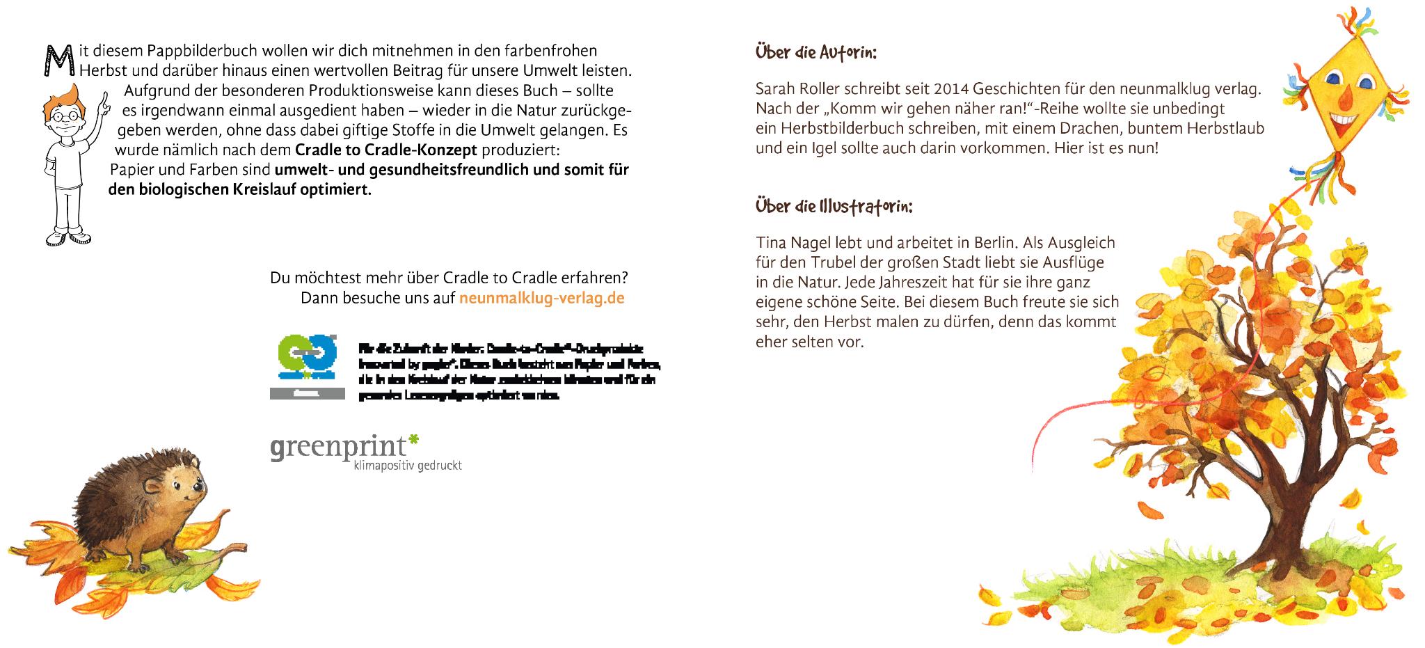 Flieg Kleiner Drachen Neunmalklug Verlag