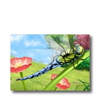 """Postkarte """"Libelle"""". Man sieht eine Königslibelle in Großaufnahme auf einem Blumenstiel sitzen."""