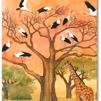 """Postkarte mit Motiv aus """"Was macht der Storch im Winter"""""""